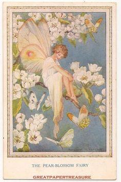 Margaret W Tarrant postcard | eBay