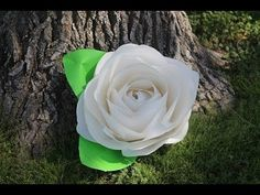 Como Fazer Flor de Papel Gigante - YouTube