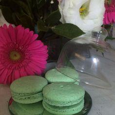Mais uma da nossa cúpula com 3 macarons e a primavera que já chegou! #maymacarons #macarons #foodlovers #sweets #sp #nossasembalagens #personalizado #eventos #casamento #lembranca