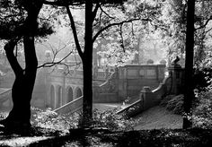 leighton gleicher - Google Search  the stairs near bethesda fountain..ny city