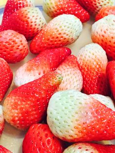 Want some strawberries?  Strawberries, Fruit, Random, Food, Strawberry Fruit, Meal, The Fruit, Eten, Meals