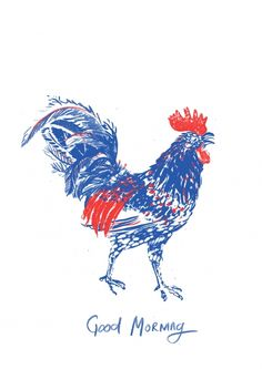 13_rooster