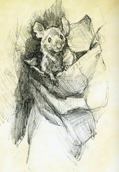 little mouse from Shadowline: The Art of Iain McCaig