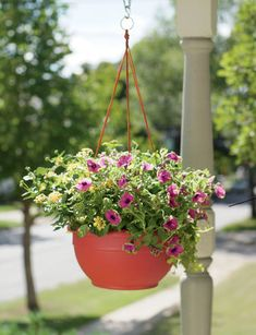Self-Watering Hanging Basket.  Maybe this would keep my flowers from drying out.