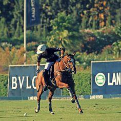 #Facundo Sola - RH #ELLERSTON, VIGENTE CAMPEÓN, DEBUTÓ CON TRIUNFO  EN LA COPA DE PLATA #SILEX DE ALTO HANDICAP.  También ganaron esta étapa RH Polo y Ayala Polo Team. #Polo #PoloSotogrande
