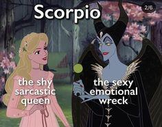 Scorpio Moon Sign, Scorpio Funny, Gemini And Scorpio, Astrology Scorpio, Scorpio Zodiac Facts, Zodiac Sign Traits, Zodiac Memes, My Zodiac Sign, Aquarius