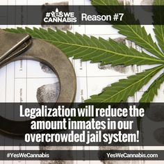 Reduces the amount inmates in our overcrowded jail system! - http://ywc.ec/why6  #YesWeCannabis