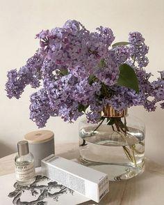 Lavender Aesthetic, Purple Aesthetic, Plant Aesthetic, Flower Aesthetic, Pastel Purple, Periwinkle, Purple Flowers, Fresh Flowers, Wild Flowers