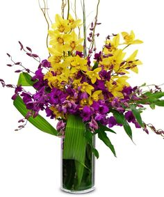 """ Allen's Orchid Excellence"" - Allen's Flowers and Plants 