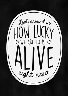 Look around!- Hamilton musical