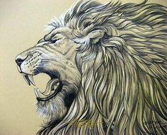 Resultado de imagen para lion illustration tumblr