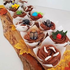 Creepy-crawly cupcakes 😱🕷️  Ideal for handing out to little hands at themed parties!  Hand crafted and freshly baked in Shoreham-by-Sea, Brighton. Order via our website.. Themed Parties, Party Themes, Bug Cupcakes, Little Cakes, Freshly Baked, Brighton, Creepy, Wedding Cakes, Birthdays