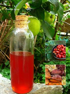 Rosehip syrup is dripping with vitamin C and has long had a reputation for keeping colds at bay all winter. It has a surprisingly tropical tang, with notes of lychee and mango. Diluted with about five parts cold water, it makes a delicious cordial drink, which kids will love, and a fantastic autumn cocktail for grown-ups. It's also an indulgent alternative to maple syrup on ice cream, waffles and pancakes. Recipe http://www.theguardian.com/lifeandstyle/2006/oct/21/recipes.dessert