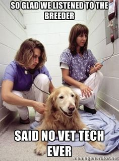 Happy Vet Tech - So glad we listened to the breeder said no vet tech ever (Vet Tech Quotes)