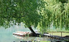 Explore the lake with one of our in house paddle-boats