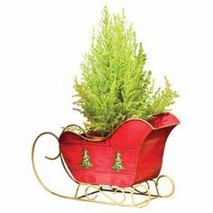 """Highlight greenery on your porch or poinsettias around your mantel with this sleigh-inspired planter, offering a bright red hue and tree details for festive holiday cheer.   Product: PlanterConstruction Material: MetalColor: RedDimensions: 29"""" H x 43"""" W"""