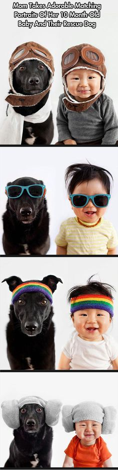 Beautiful Pics Of Baby and Dog With Hats