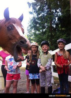 Fotobomba del caballo.