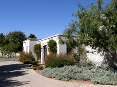 NW El Paso Residence - Honey Mesquite, Powis Castle Sage, Flame Acanthus, Red Yucca, Confederate Jasmine (QUERCUS, 2001)