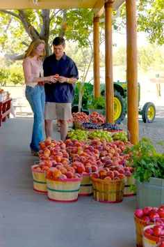 Couple selecting a peach in Palisade Colorado, home of the best peaches in the world and Peach Street Distillers. I'm bringing my ice cream freezer when I visit.