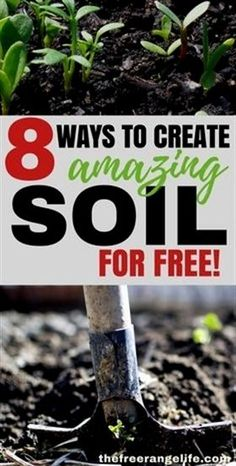 Gardening doesn't have to be expensive. Improve your garden soil with these 8 amendments that are totally free and have your best garden yet! #VegetableGardening