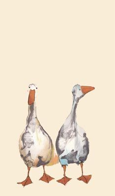 """Wendy and Grace"", greeting card image by Catherine Rayner Duck Illustration, Watercolor Illustration, Watercolor Art, Art Canard, Artwork Images, Watercolor Animals, Bird Art, Painting Inspiration, Illustrators"