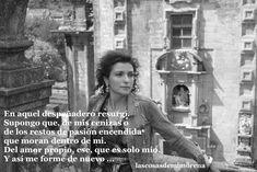 Resurgí de las cenizas, cuál ave fénix y afronte las adversidades con valentía. Quotes, Phoenix Bird, Pretty Quotes, Women, Quotations, Quote, Shut Up Quotes