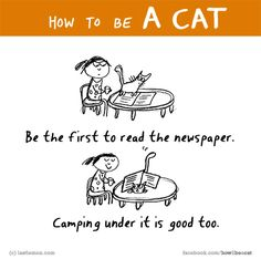 HOW TO BE A CAT? If you know, tell us here http://lastlemon.com/cat_submit/ and we'll illustrate it. Links to all our FB pages here: lastlemon.com/