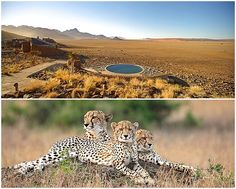 We pride ourselves in keeping our finger on the pulse of Southern African luxury, with this in mind we recently sent one of our travel consultants to Namibia to check out what's new and what's hot in the luxury space. Luxury Travel, Us Travel, Grand Canyon, Road Trip, Holiday, Vacations, Road Trips, Holidays, Grand Canyon National Park