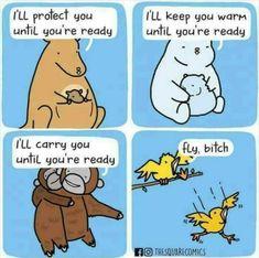 Birds gotta be a little gentle... - 9GAG