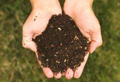 Jardinage : Comment bien nourrir le sol de son jardin ?
