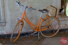 Public Bicycle, Angel Island