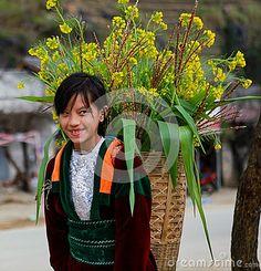 VAN, HA GIANG, VIETNAM, January 01, 2017: Unidentified ethnic minority kids with baskets of rapeseed flower in Hagiang