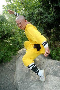 Shaolin Temple Master Yuan Shi Xing Wu Tai Chi Qigong Kung Fu Classes ...