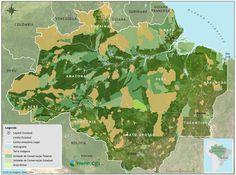 As UCs somam 112 milhões de hectares: 27% do território da Amazônia brasileira. O desmatamento dentro dessas áreas é infinitamente menor do que fora. Ainda assim, essas reservas só resgatarão sua função plena de proteger a biodiversidade se os governos assumirem metas e prazos claros. O primeiro passo, segundo o Imazon, é responsabilizar os gestores por danos ao patrimônio público. O segundo é investir no turismo e no manejo florestal. Por fim, zerar o desmatamento nessas áreas até 2017.