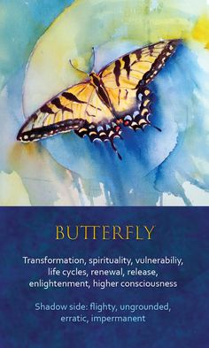 The butterfly as your spirit animal. How does this apply to (me)? I am open to ask and I am open to receive an answer Butterfly Spirit Animal, Spirit Animal Totem, Animal Spirit Guides, Animal Meanings, Animal Symbolism, Butterfly Transformation, Spiritual Animal, Animal Medicine, Power Animal