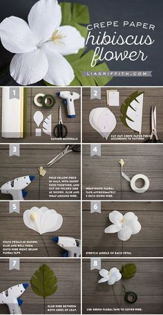 DIY: Crepe Paper Hibiscus - Lia Griffith - for downloading the templates they tell: This download requires a membership.