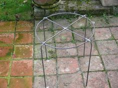 use with giant catmint -- keeps it upright -- Single Ring Grow-throughs Garden Crafts, Diy Garden Decor, Garden Projects, Garden Art, Organic Gardening, Gardening Tips, Short Plants, Plant Supports, Garden Trellis
