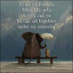 When life gets stormy...☂