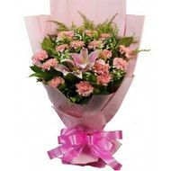 Contact Us –Phone : 08585927300 | visit : www.giftcarry.com | E-mail : info@giftcarry.com #Bunch_of_2_Pink_lilies_and_15_Carnation Bunch of 2 Pink lilies and 15 Carnation https://www.giftcarry.com/Bunch-of-2-Pink-lilies-and-15-Carnation