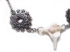 Vertebrae Bone Necklace - Animal bone jewelry. Raccoon vertebrae bone necklace. Women's jewelry. Post Apocalyptic Fashion. Bone Jewelry, Women's Jewelry, Post Apocalyptic Fashion, Bone Crafts, Animal Bones, Diva, Crochet Earrings, June, Jewels