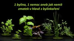 Detox, Plants, Plant, Planets
