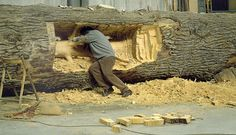 Giuseppe Penone. It's like he's gutting the carcase of a tree. Amazing.