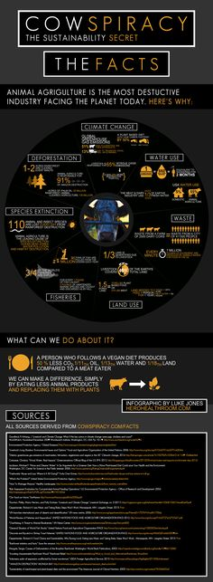 This info graphic nails it!  Concise, well documented info you really need to consider if you are concerned about our environment.  COWSPIRACY: The Sustainability Secret (documentary).