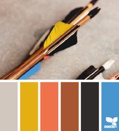 color aim