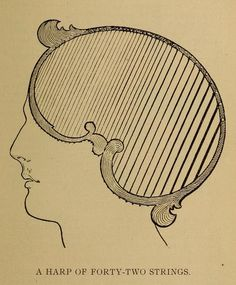 Illustrations from Vaught's Practical Character Reader, a book on phrenology by L. A. Vaught published in 1902.