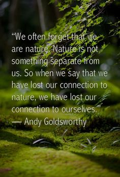 We often forget that we are nature. Nature is not something separate from us. So when we say that we have lost our connection to nature, we have lost our connection to ourselves. - Andy Goldsworthy