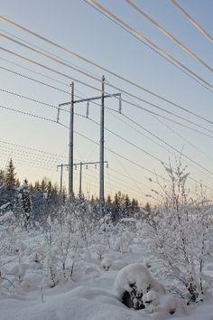 strompris februar 2013 Utility Pole, Snow, Outdoor, February, Outdoors, Outdoor Games, The Great Outdoors, Eyes, Let It Snow