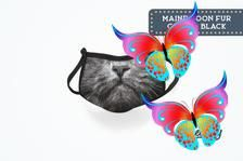 Maine Coon Cat Washable Animal Face Mask Maine Coon Cat Adult Kids Kitty Face Mask Washable &   Etsy<br> Animal Face Mask, Animal Faces, Maine Coon Cats, Medical, Kitty, How To Make, Animals, Medical Doctor, Animais