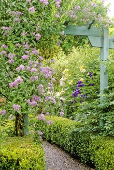 Pergola with climbing vine over the garden path adds beauty and interest